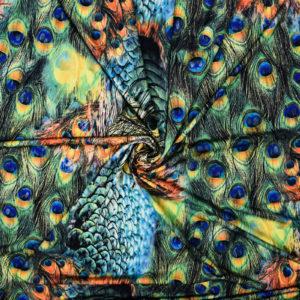 Peacock jersey